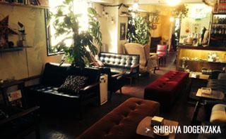 シーシャカフェ NORTH VILLAGE 渋谷3号店