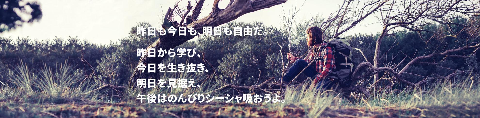 昨日も今日も、明日も自由だ。昨日から学び、今日を生き抜き、明日を見据え、午後はのんびりシーシャ吸おうよ。